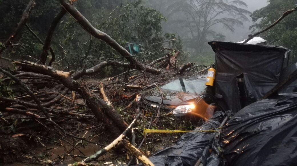 Cerrada autopista Bogotá Villavicencio  por deslizamiento de roca, lodo y caída de árboles  en varios tramos