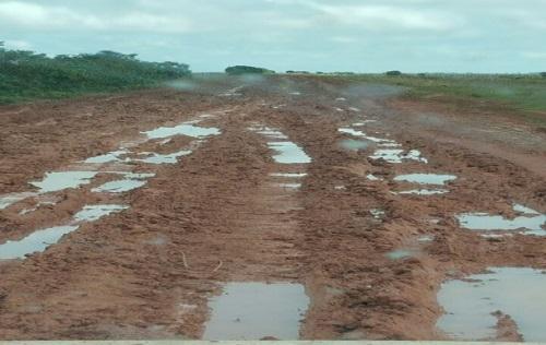 Juez Segundo administrativo de Yopal abre incidente de desacato a gobernación por arreglar vía a Orocué