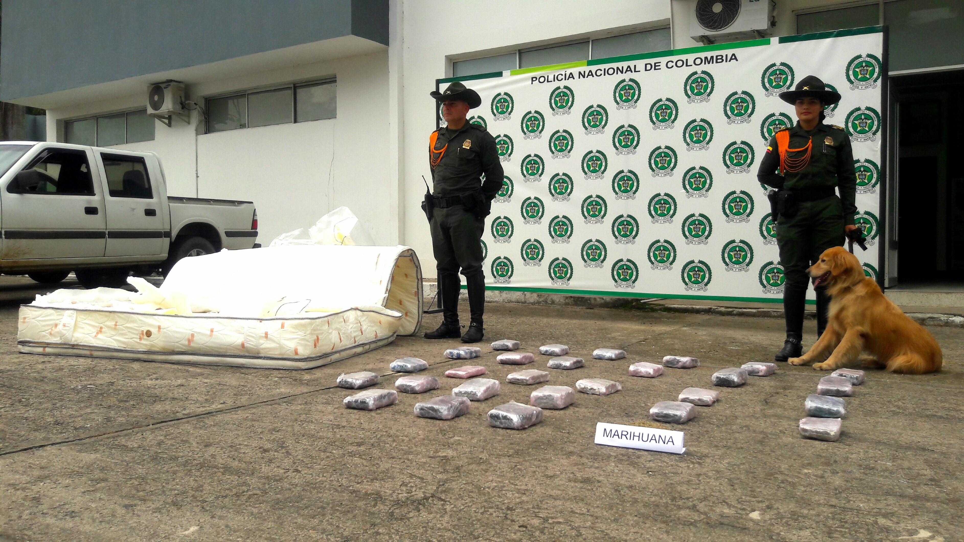 """pipe"""" encontró marihuana  oculta en un colchón que venían en bus de los Libertadores"""