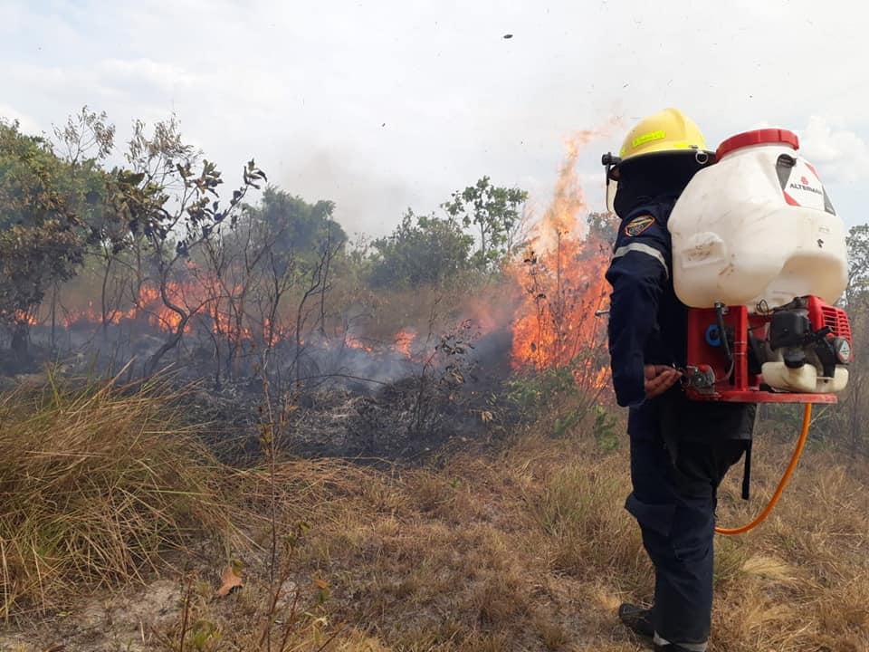 Incendios siguen afectando a sabanas de Orocué