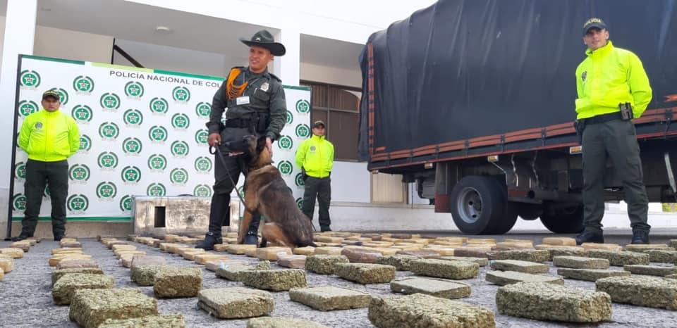 Incautan  95 kilos de marihuana en  Yopal