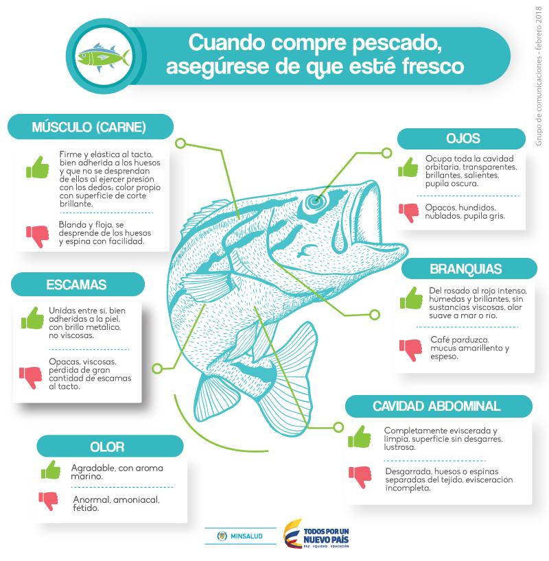 Recomendaciones para el consumo de pescado en época de Semana Santa