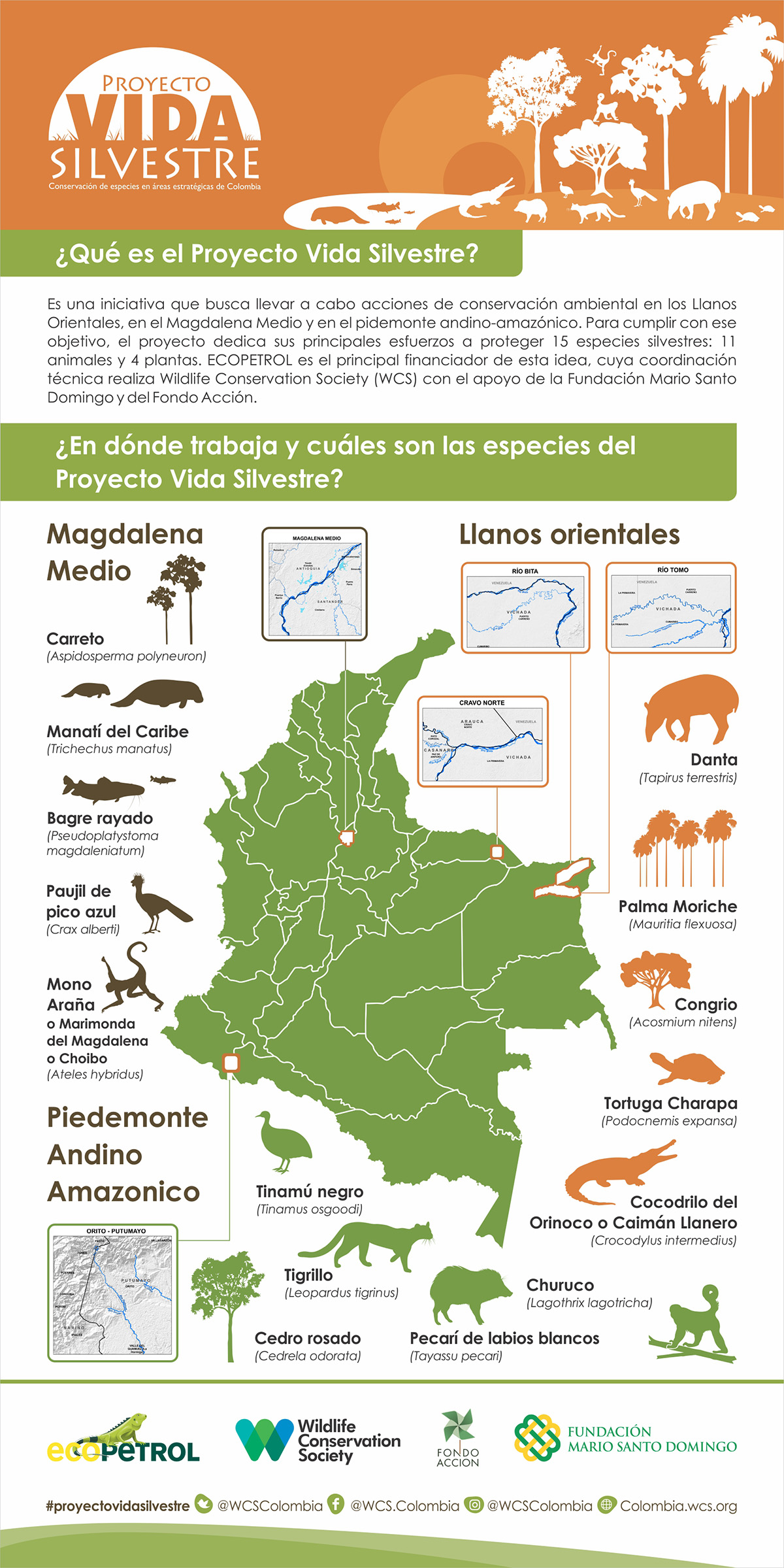 Ecopetrol y WCS promueven conservación de la Danta